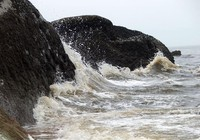 Thủy triều đỏ đã tấn công bờ biển Bình Thuận như thế nào?