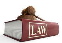 Chủ tịch nước công bố 8 Luật và Pháp lệnh mới
