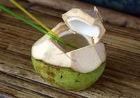 Bị đâm chết chỉ vì quả dừa giá… 15.000 đồng