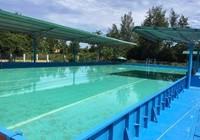 Trường có 9 học sinh đuối nước đã trang bị hồ bơi