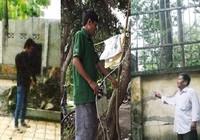 3 vụ đi tù vì bắt trộm 'kinh điển'