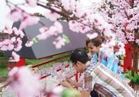 Trải nghiệm văn hóa Nhật Bản ở Sun World Halong Complex