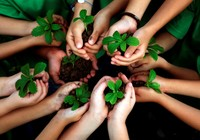 Thay đổi lối sống vì môi trường