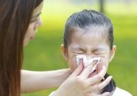 Tác dụng phòng ngừa cảm cúm của Probiotics