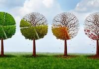 Tăng cường nhận thức về biến đổi khí hậu