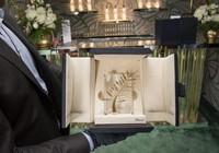 Lộ diện giải thưởng liên hoan phim Cannes 2015