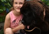 Một cô bé được Tổng thống Putin tặng chó cưng