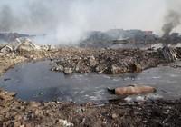Hàm lượng chất độc gần vụ nổ Thiên Tân cao gấp 356 lần mức cho phép