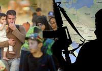 Khoảng 2400 người Nga đang chiến đấu chung với IS