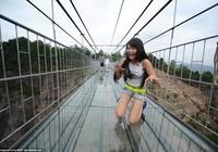 'Cứng chân' khi đi qua cầu treo trong suốt
