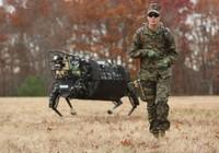 Quân đội Mỹ gác lại kế hoạch sử dụng rô-bốt chó của Google