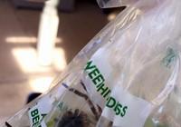 Hoảng hồn phát hiện 'thai phụ' nhện khổng lồ trong túi nho siêu thị
