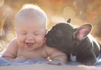 Cực kỳ dễ thương bộ ảnh chú bé và 'anh' cún của mình