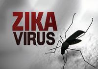 Thêm 2 phụ nữ mắc Zika ở TP.HCM, nguy cơ bùng phát mạnh