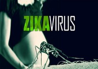 12 trường hợp Zika nằm rải rác khắp TP.HCM