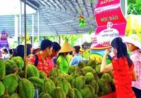 Đến Lễ hội Trái cây Nam bộ mua trái cây giá rẻ