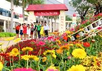 Ngắm cảnh làng quê Việt Nam ở khu nhà giàu
