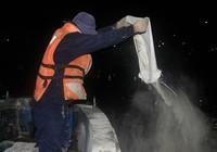 Clip công nhân rải hơn 7 tấn hóa chất xử lý kênh Nhiêu Lộc