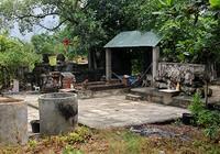 Chùm ảnh: Khu mộ cổ độc đáo gần 200 năm ở Gò Quéo