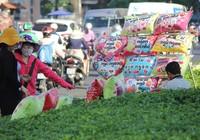 """""""Con đường tình yêu"""" rực rỡ quà và hoa Valentine"""