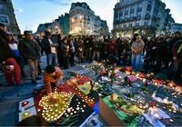 IS nhận trách nhiệm đánh bom Bỉ