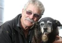 Cô chó già nhất thế giới qua đời