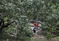 Cắm trại mùa hè gặp lũ quét bất ngờ, 10 người chết