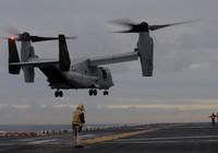 Thủy quân lục chiến Mỹ dừng toàn bộ máy bay để kiểm tra