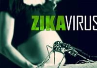 Cả nước ghi nhận 28 phụ nữ mang thai nhiễm virus Zika