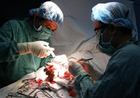 BV quận 11 phẫu thuật thành công ca đứt cổ tay phức tạp