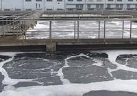 Nước thải đầu ra nhiều bệnh viện TP.HCM không đạt