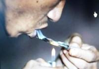 Khách sạn bị phạt vì khách thuê phòng 'phê' ma túy