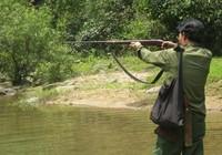 Dùng súng săn bắn chết người vì tưởng khỉ đang ngồi trên cây