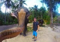 """Voi biết chụp hình """"tự sướng"""" tại Thái Lan"""