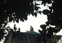 Thanh niên nghi ngáo đá, cố thủ trên nóc nhà 4 tầng
