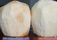 """Cách phát hiện dừa bị """"tắm trắng"""""""