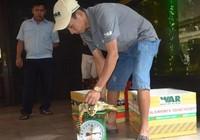 Giải cứu 2 con rùa biển quý hiếm trong quán nhậu