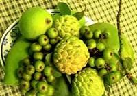 Tác dụng của 5 trái cây 'cầu - sung - vừa - đủ - xài'