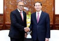 Chùm ảnh: Chủ tịch nước Trần Đại Quang tiếp đại sứ Cuba