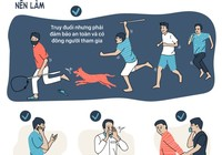 Gặp kẻ trộm chó, bạn nên làm gì để không vướng lao lý?