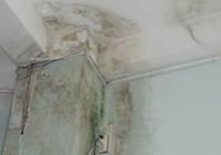 Hàng xóm để nước mưa chảy ngấm tường gây hư hỏng?