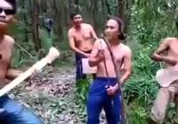 Clip: Ban nhạc trong rừng
