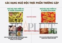 Infographic: Các dạng ngộ độc thực phẩm do vi khuẩn