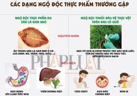 Infographic: Các dạng ngộ độc thực phẩm từ cá và rau củ thường gặp
