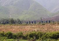 Đà Nẵng: Người nghiện tăng đáng báo động