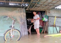 Quảng Nam: Hết ăn tết vì lũ vùi