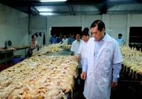 Hàng nông sản không nguồn gốc sẽ bị trục xuất khỏi chợ