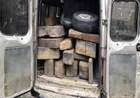 Tạm giữ xe 16 chỗ chở 17 phách gỗ không giấy tờ