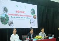 Bí thư Đà Nẵng đề nghị hiến kế bảo vệ Sơn Trà