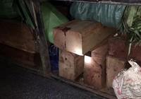 Bị phát hiện chở gỗ lậu, nhà xe xin chung chi 10 triệu